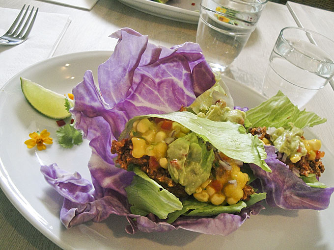 raw food göteborg