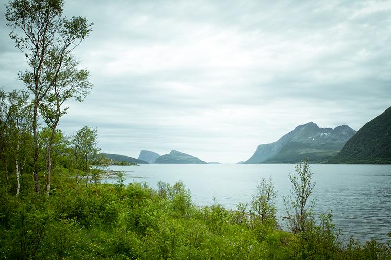 Tromsø 108 Sommarøy