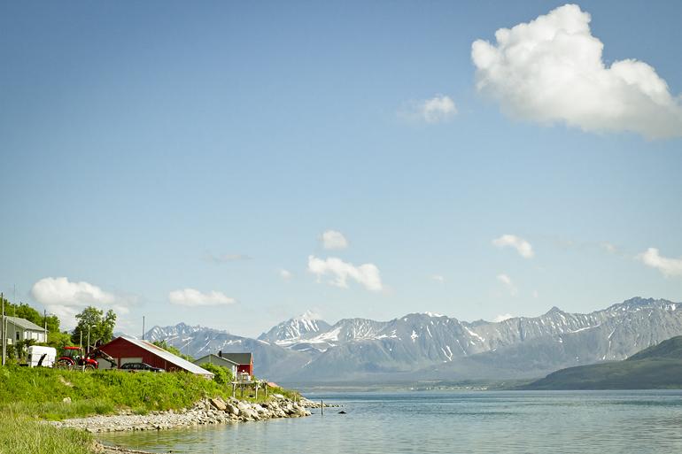 Tromsø 219 OLDERVIK