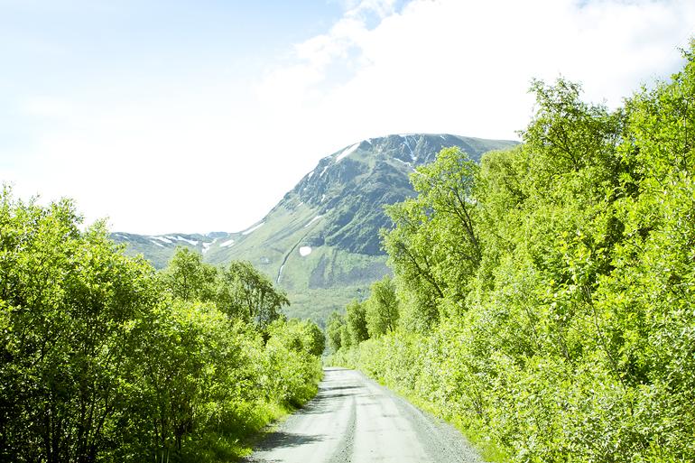 Tromsø 228 OLDERVIK