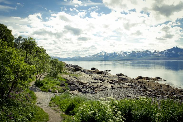 Tromsø 5