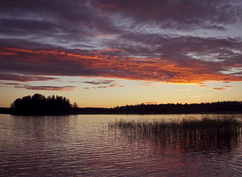 swedish summer 1