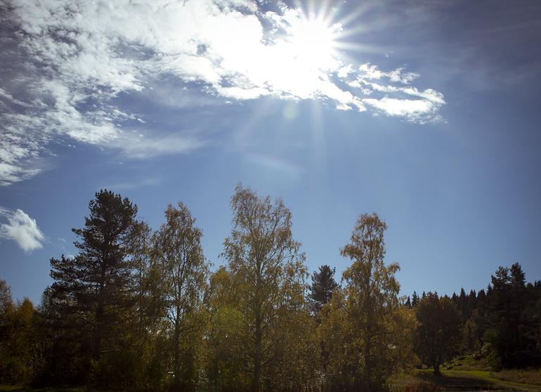 Sälen Transtrand 29