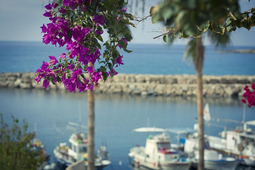 Cyprus coral beach resort 103