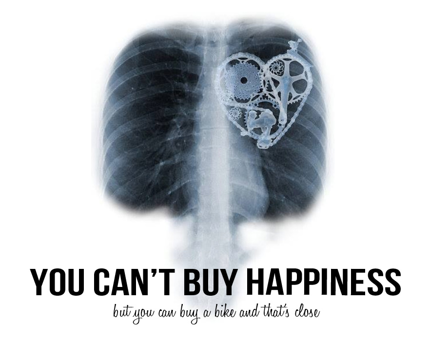 you cant buy happiness but you can buy a bike and thats close