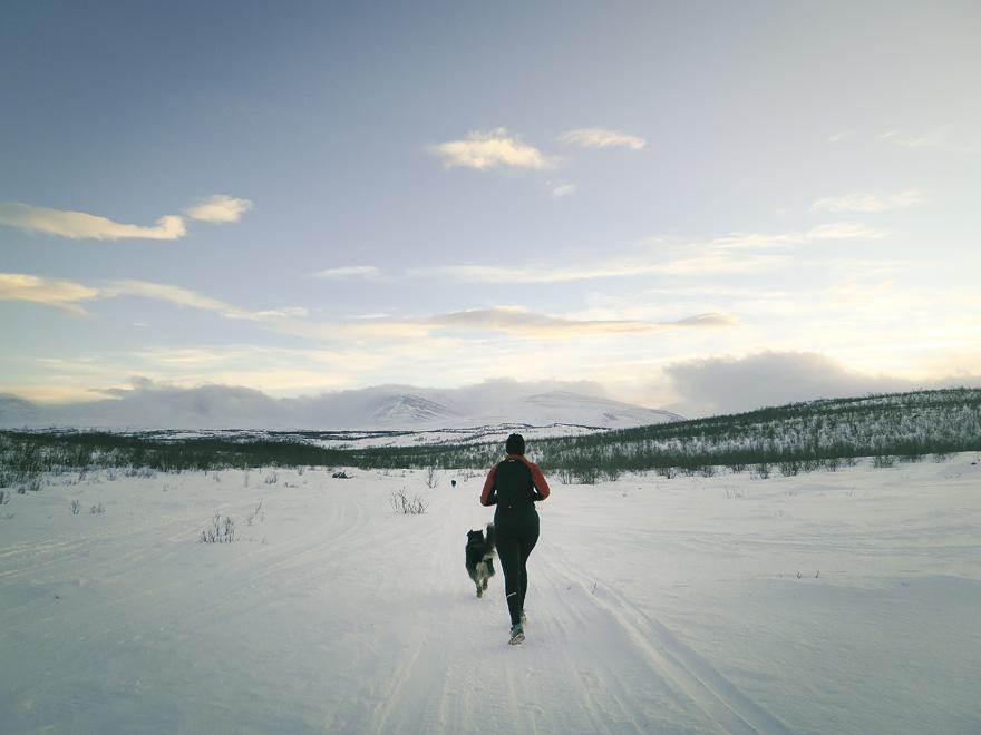 Löpning på fjället