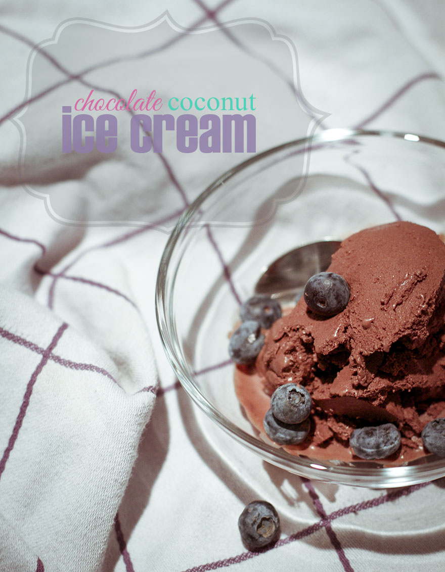 chocolate coconut ice cream