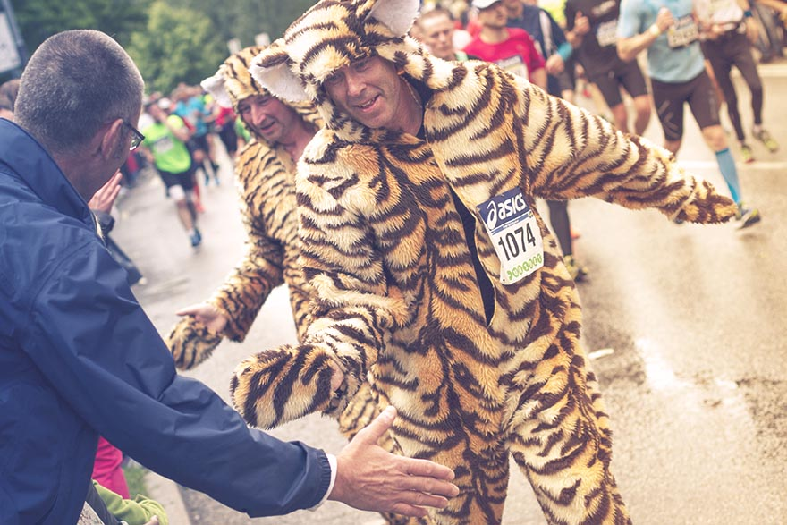 tiger stockholm marathon