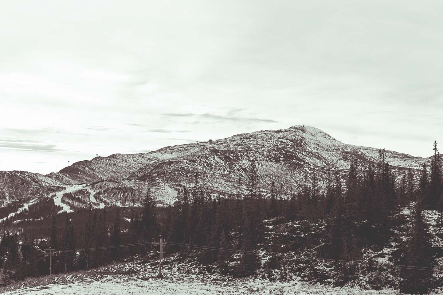 åre copperhill