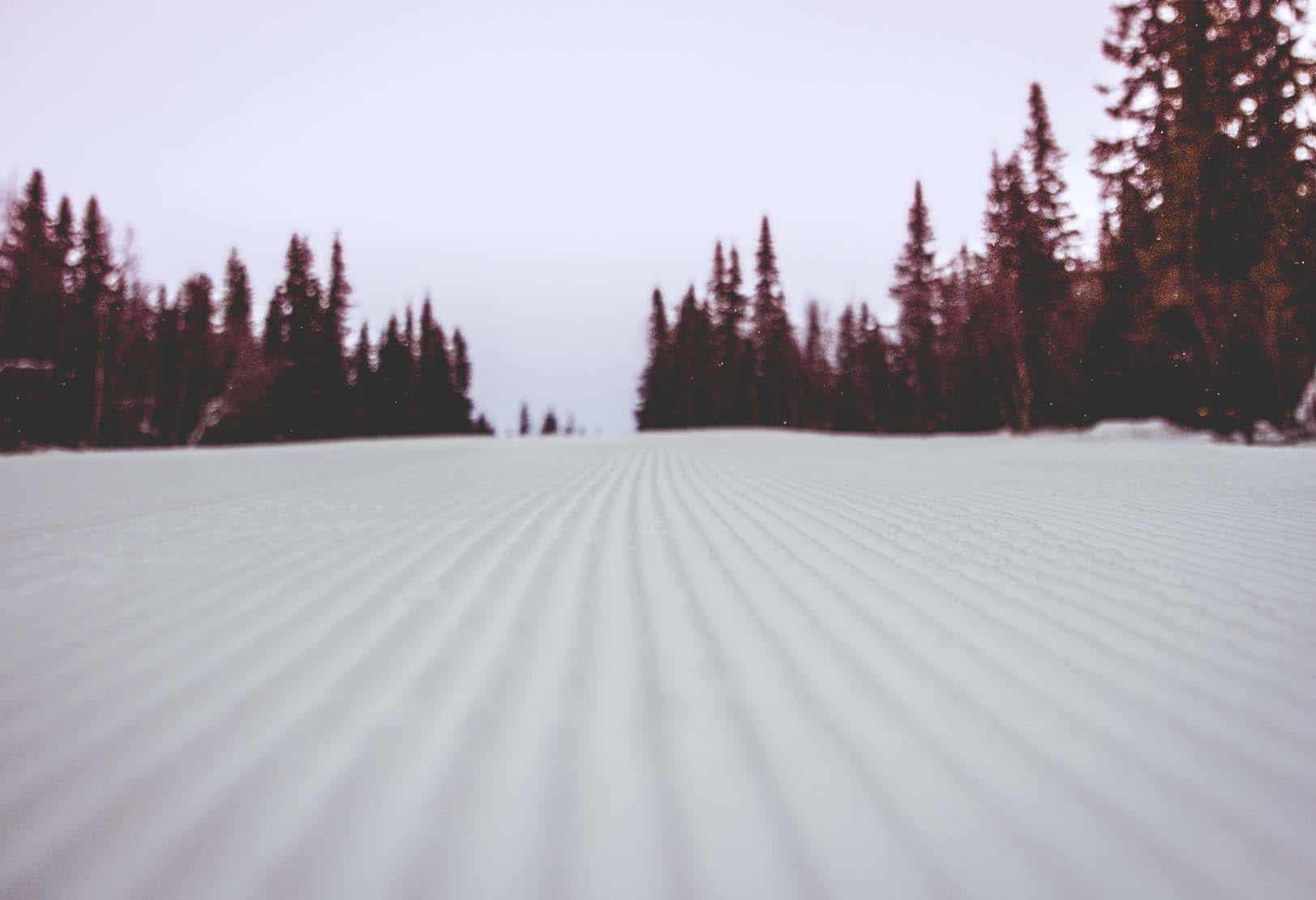 manchester skidbacke IMG_7531