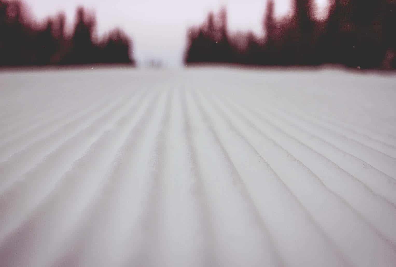 manchester skidbacke IMG_7534