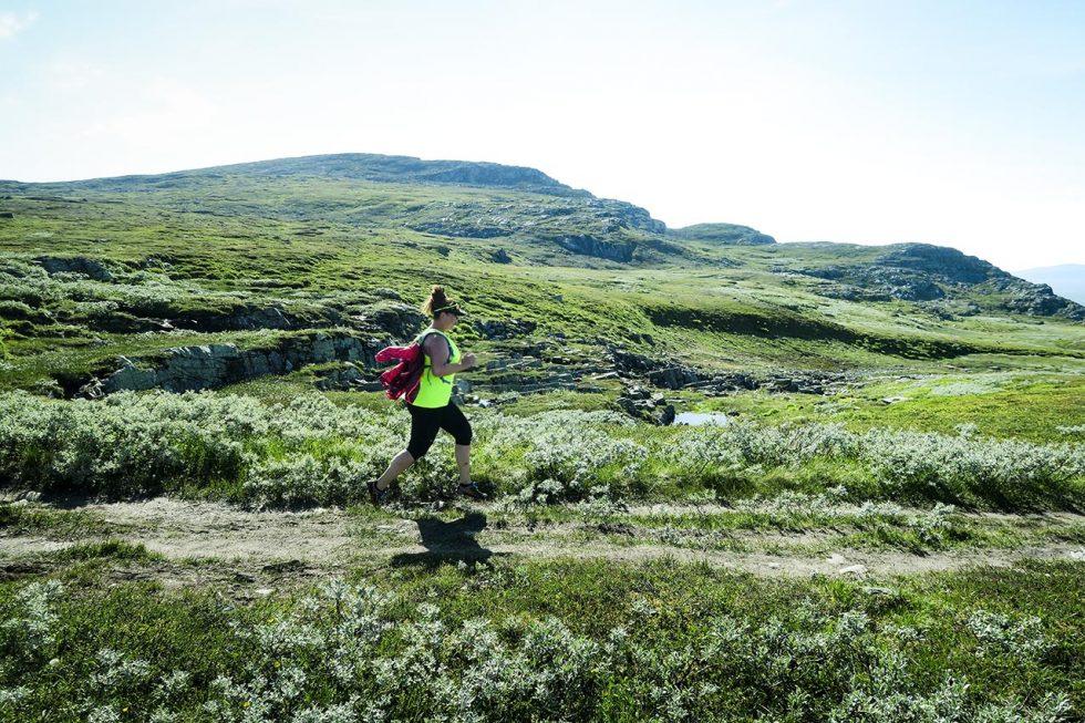 blåhammaren löpning IMG_4362