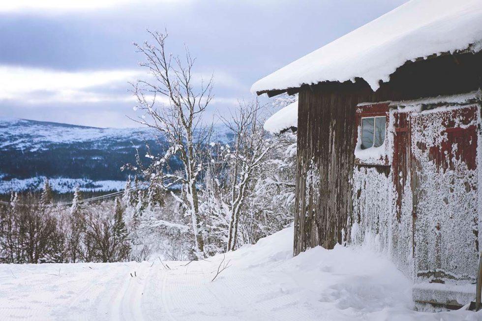 Min vinter