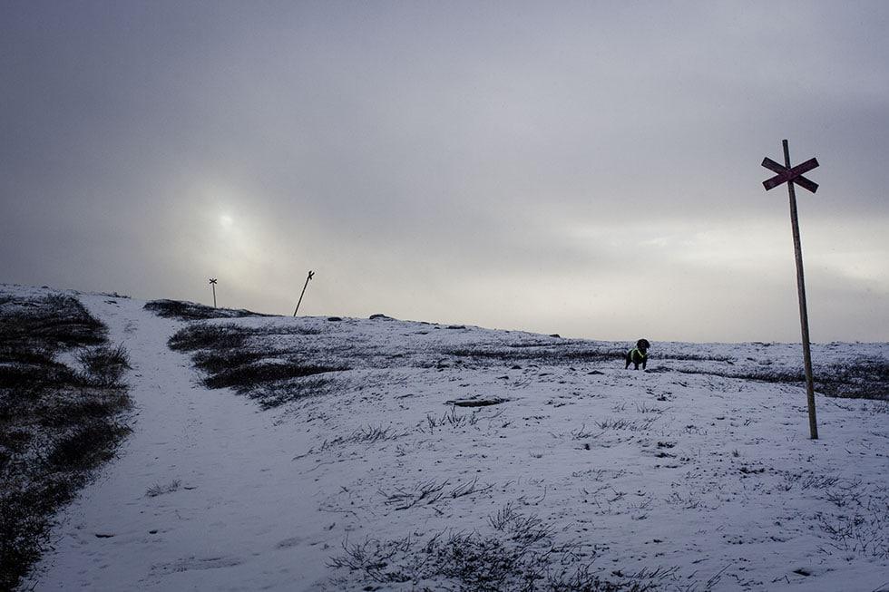snö i åre ullådalen stendalen hazel IMG_9396
