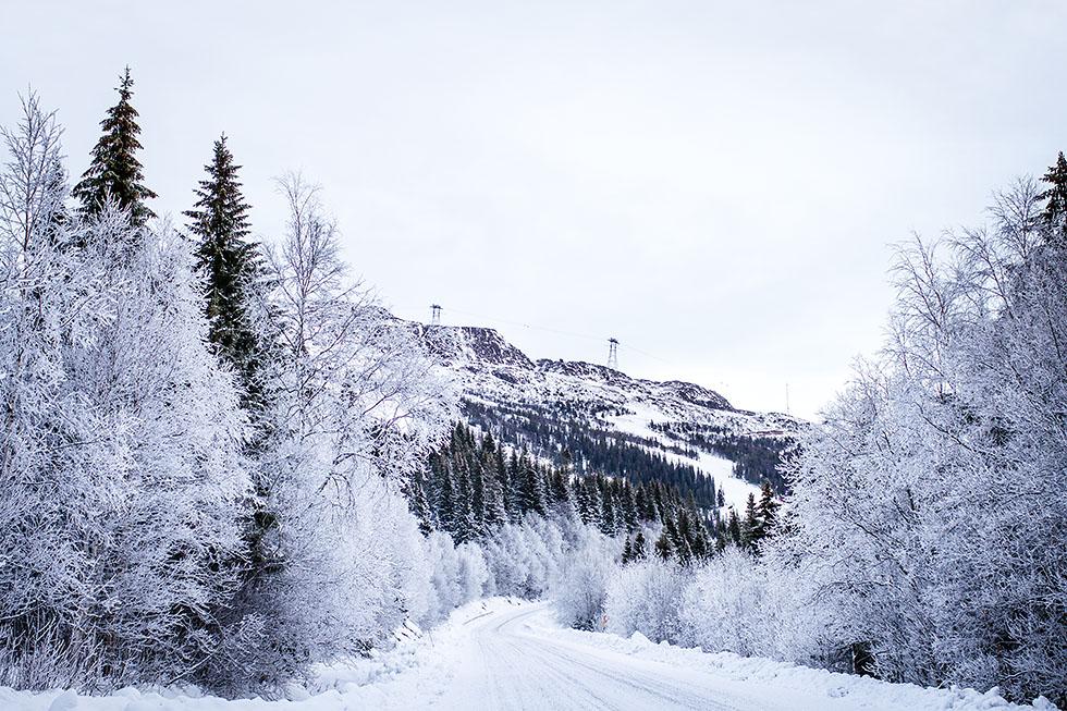 Vinter i Åre Ullådalen