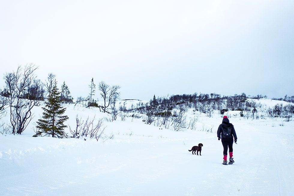 snöskor ullådalen IMG_2847