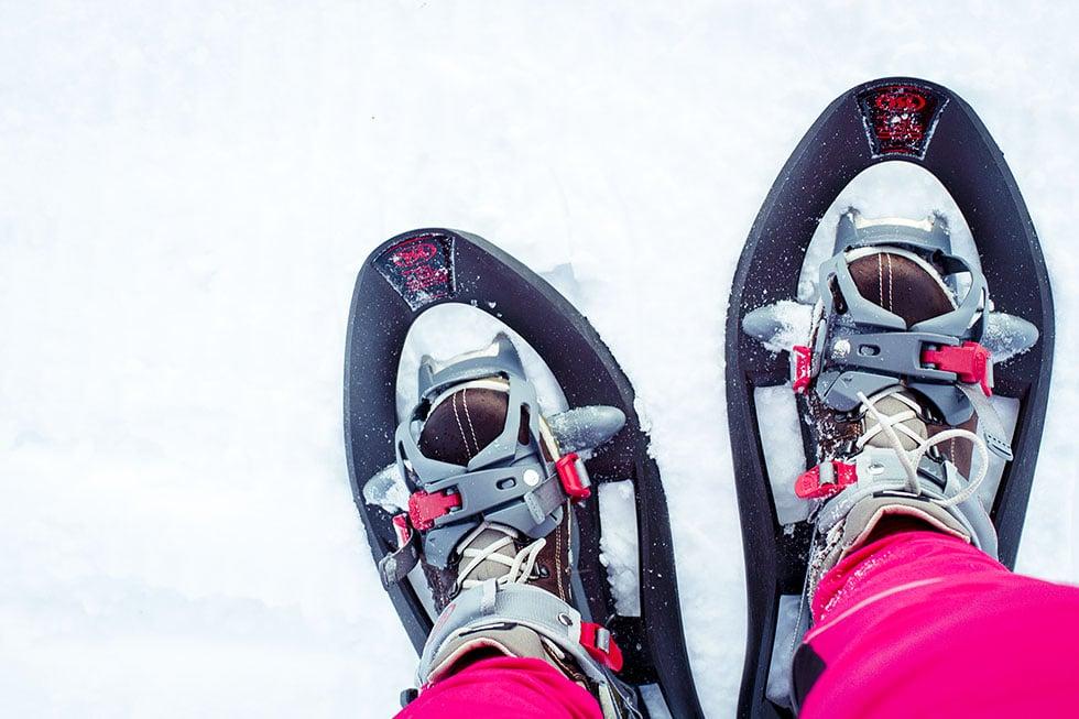 snöskor ullådalen IMG_2909