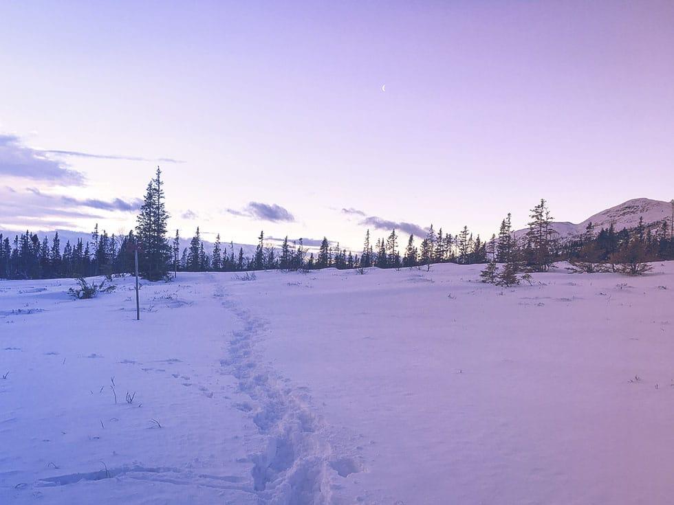 snöskor åre träningsglädje IMG_9766