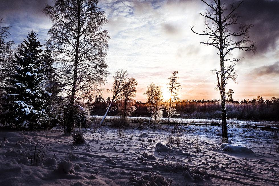 Ridning i magiskt vinterlandskap
