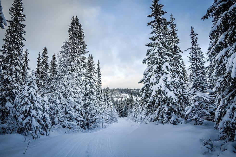 En tur i spåren i Edsåsdalen