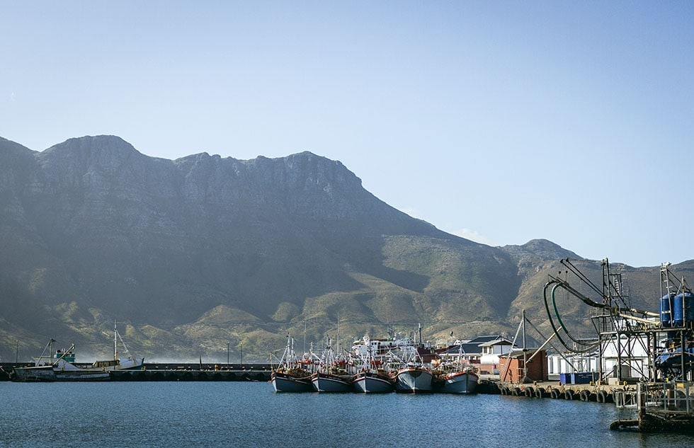 Cape town Hout bay fishing
