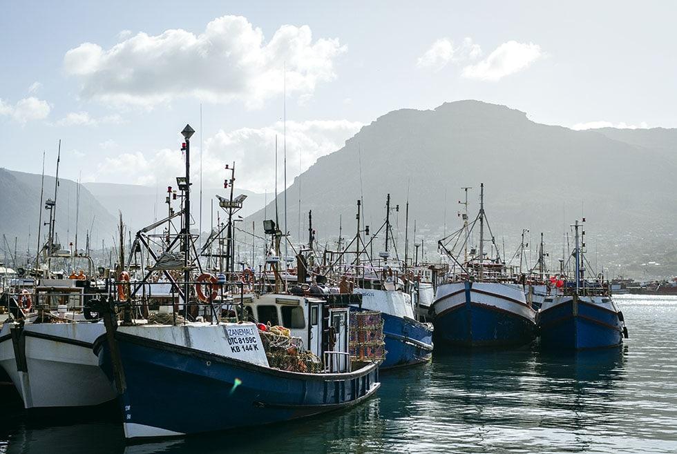 Cape town Hout bay fishing