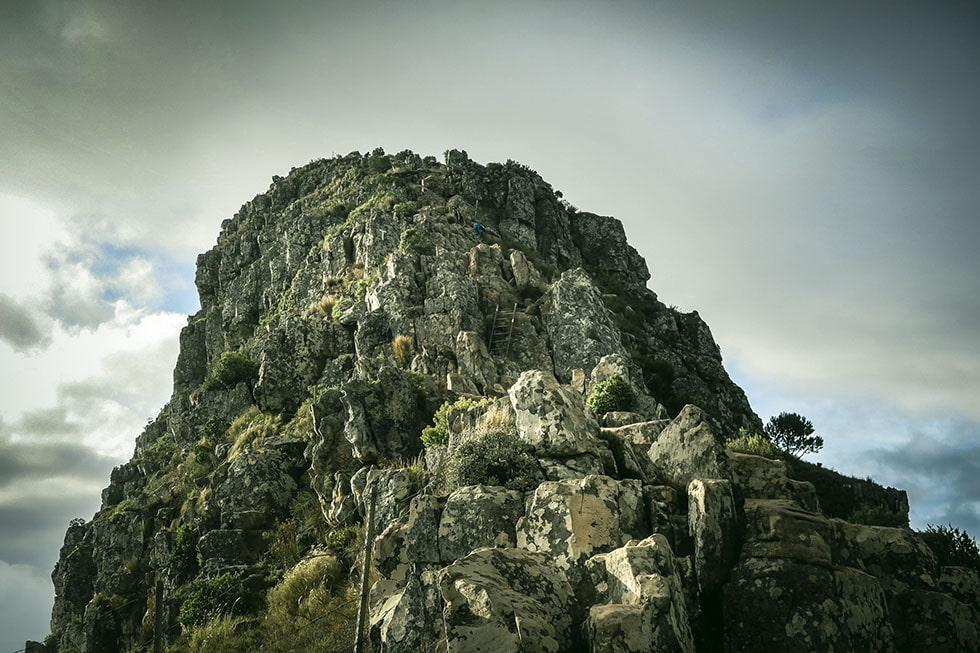 Cape town hike Lion's head