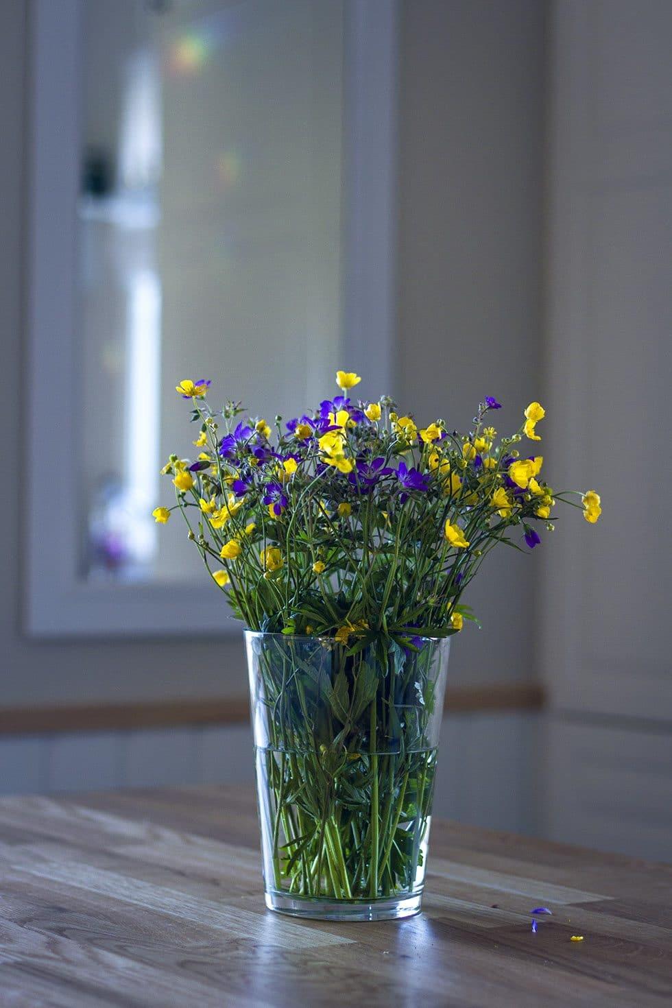 sommar midsommar blommor IMG_9716