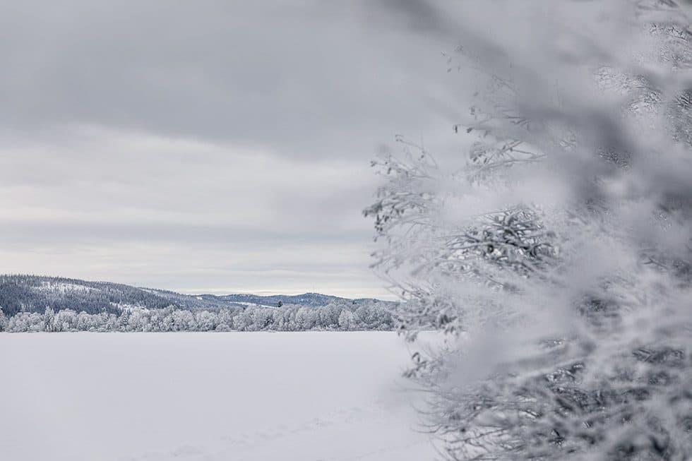 Jul Åre 5M0A3861