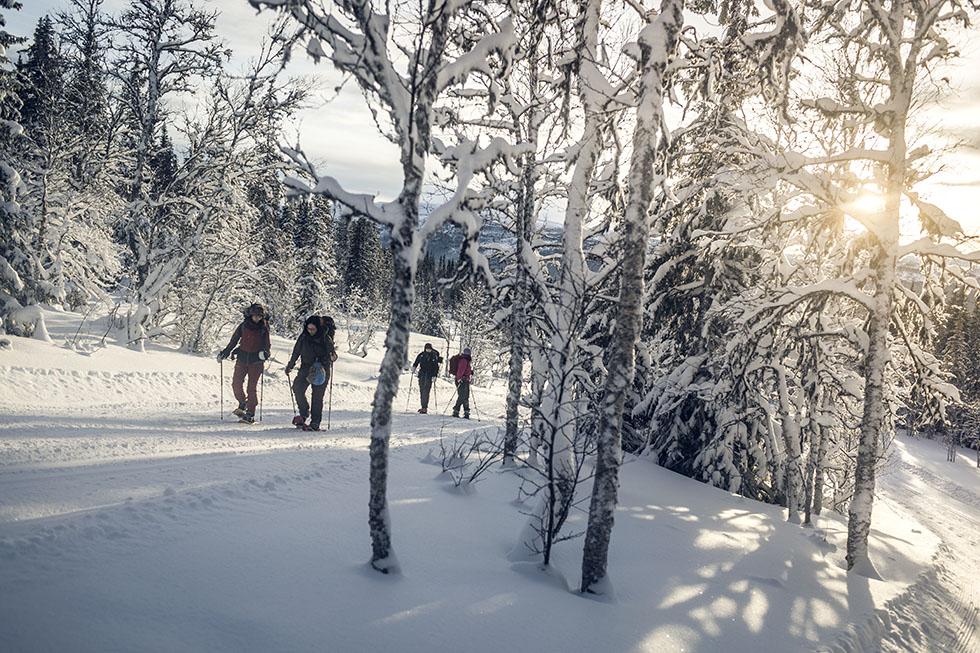 snöskor_edsåsdalen_åre_5M0A8773