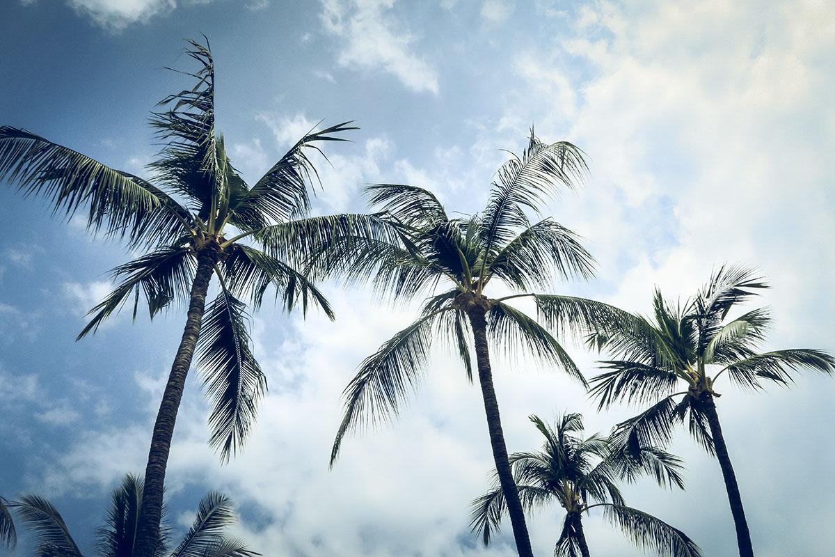 Kailua-Kona Hawaii