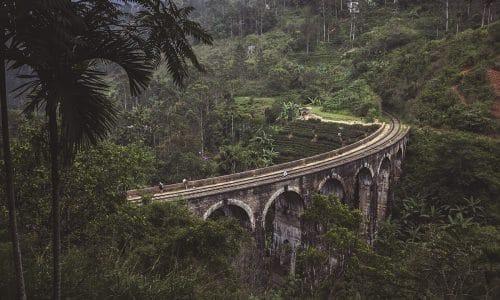 Sista dagarna på Sri Lanka