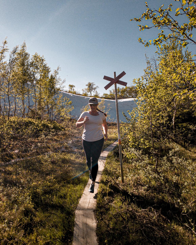 Tips till södra Årefjällen i sommar