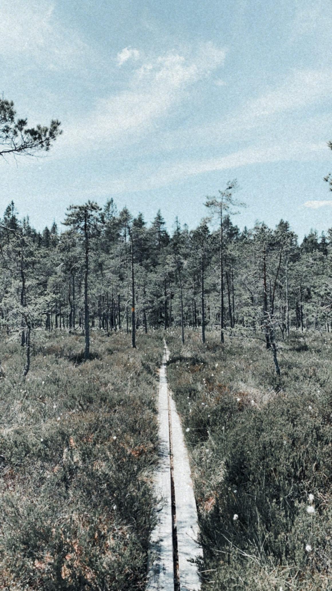 Löpning och lyx i Bergslagen